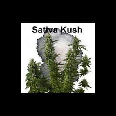 Pack Sativa kush CBD DIY 50/50