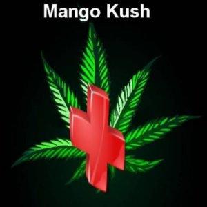 Rescue weed Mango Kush