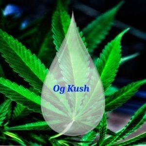 Og Kush 1000 mg CBD - DIY