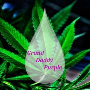 Grand Daddy Purple 1000 mg CBD - DIY