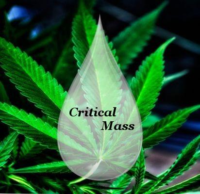 liquide CBD critical mass 1000 mg