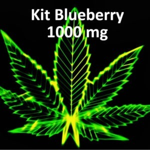 blueberry DIY CBD