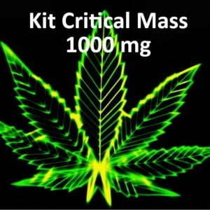 critical mass CBD DIY